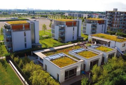 dach_zielony2