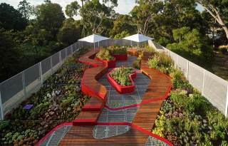 Hassell_Burnley-Living-Roofs_3